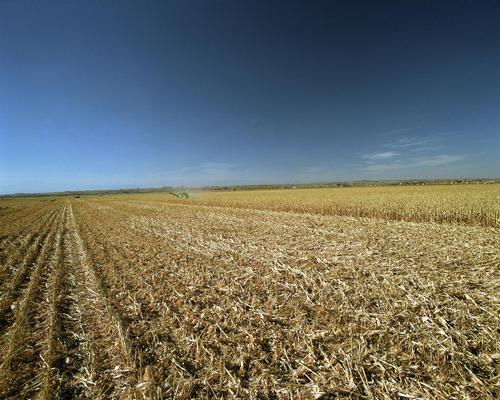 Campo de feno - Fonte: NREL