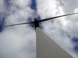 Com vento a ajudar, renováveis cobriram todo o consumo elétrico nacional